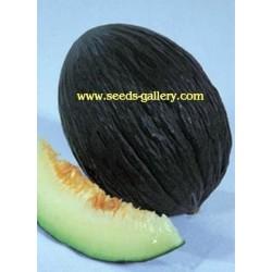 Graines de Melon Noir