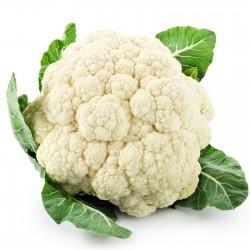 Cauliflower Seeds SNOWBALL