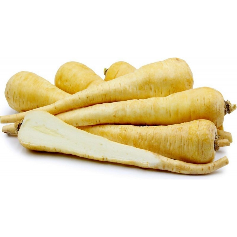 Long White Smooth Parsnip 10.000 Seeds