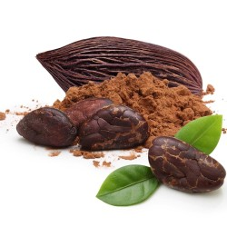 Graines de Cacaoyer - Cacao