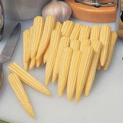 Graines de maïs sucré Mini...
