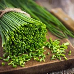 Vlasac Seme (Allium...