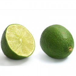 Key Lime mag (Citrus...