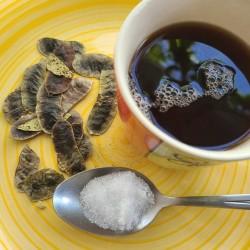 Sickle senna seeds (Cassia...