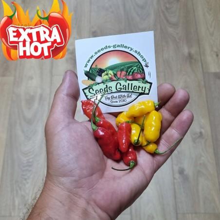 Dragon fire chili peppar frön