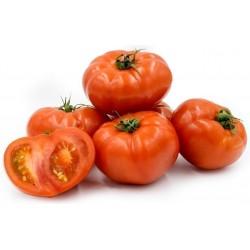 Semillas De Tomate Beefsteak