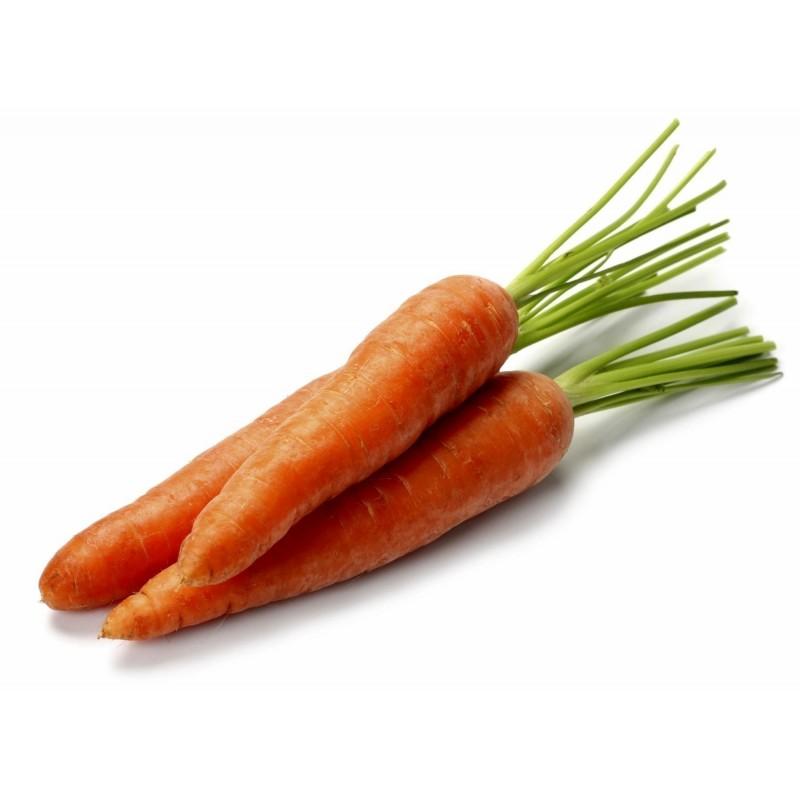 Danvers Carrot Seeds