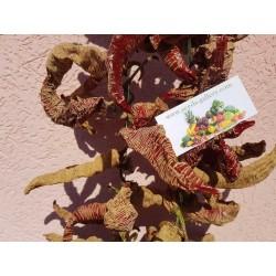 """Vezanka"" Chili Seeds Old Serbian variety"
