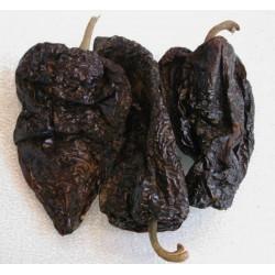Semillas de chile ANCHO POBLANO
