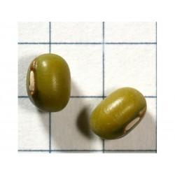 Σπόρος Mung φασόλι (Vigna radiata)