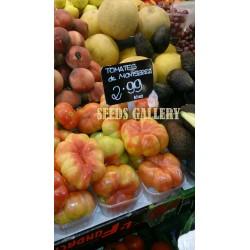 Montserrat Tomato Seeds