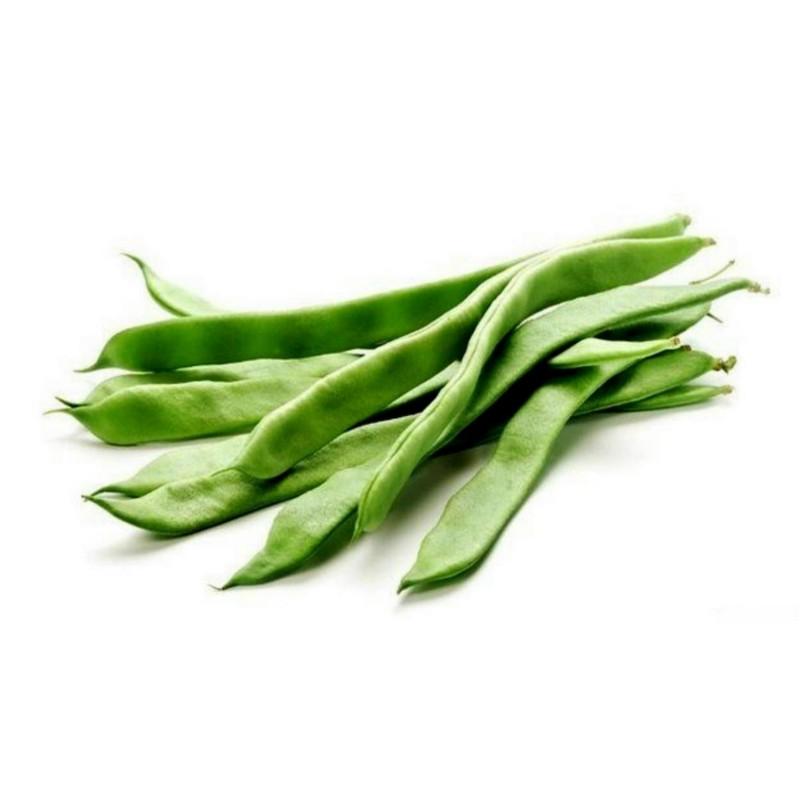 Pole Beans Seeds 'Cer Starozagorski'