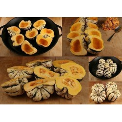 "Graines Courge Patidou ""Sweet Dumpling"""