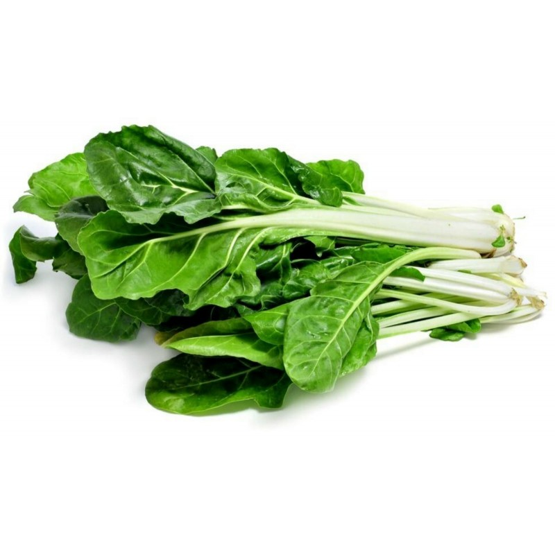Swiss Chard Seeds 'White Silver'