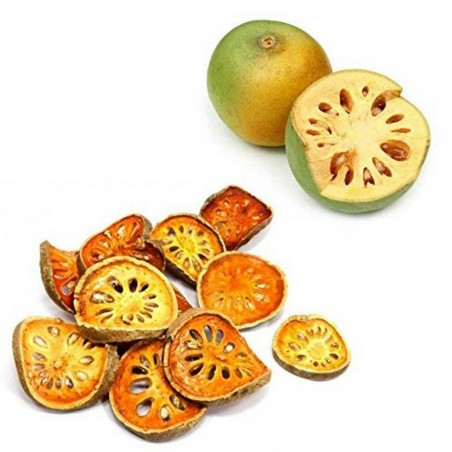 Bael Seeds - Bengal Quince, Stone Apple