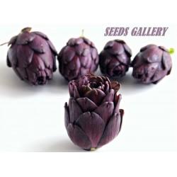 Semillas de Alcachofa Violet de Provence