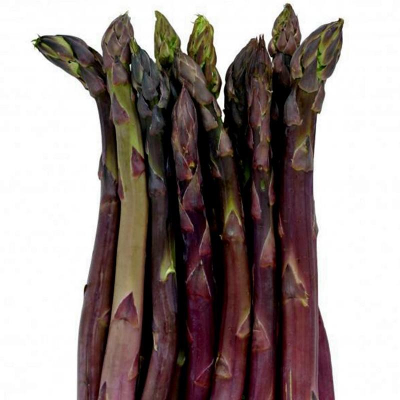 Semi Di Asparagus ARGENTEUIL