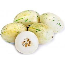 Semillas de melón blanco SNOW LEOPARD - MUY RARO