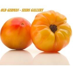 Tomatfrön OLD GERMAN