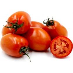 Graines De Tomate ROMA NANO