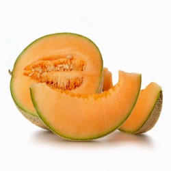 Graines De Melon HALES BEST JUMBO