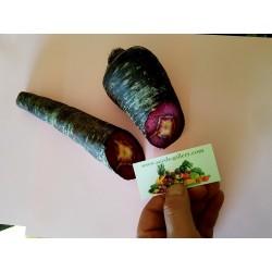 Sementes de Cenoura Purple Dragon