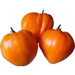 Graines de tomate GERMAN ORANGE STRAWBERRY