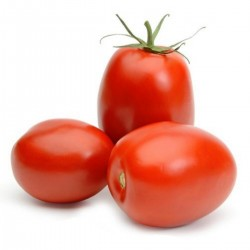 Sementes de tomate RIO GRANDE