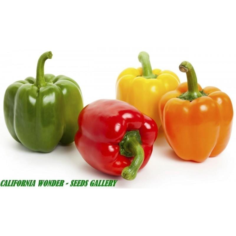 Sweet Pepper Seeds California Wonder