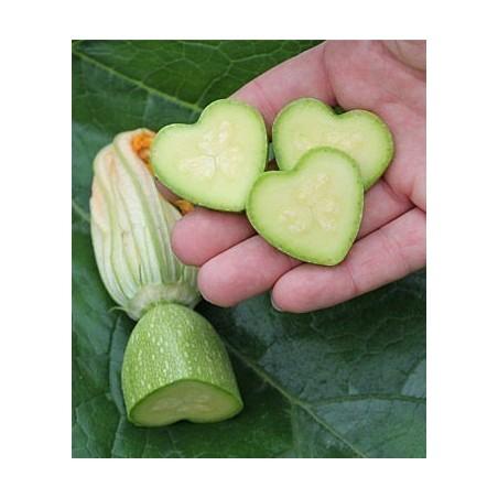 Fruit and Vegetable Mould, Star Shape, Change Fruits Shape