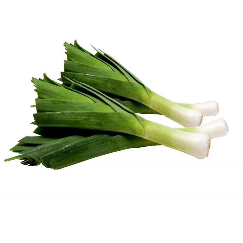 Σπόροι ΠΡΑΣΟ Kamus Allium Porrum