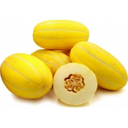 Semi Di Melone Coreano, Sun Jewel, Chamoe