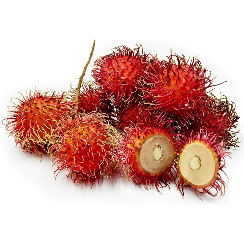 Rambutan Fresh Seeds Exotic Fruits