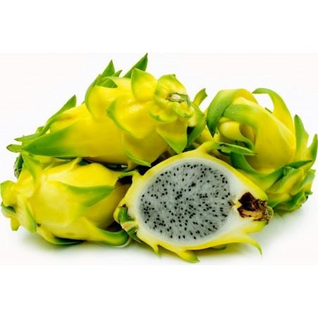 Pitaya, Pitahaya, Dragon Fruit Yellow Seeds