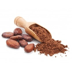 Raw cocoa pieces - the best antioxidants