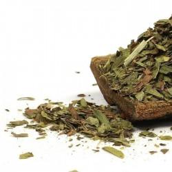 Tarragon Seeds Herb