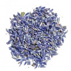 Lavender spice