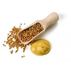 Gelbe Senfgewürze - ungemahlen 1.25 - 1