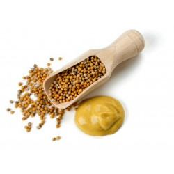 Yellow mustard spices - unground 1.25 - 1