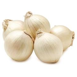 Semillas cebolla blanca Paris Silverskin 1.95 - 1