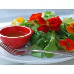 Καπουτσίνο αναμικτοι Σπόροι - φαγώσιμο, θεραπευτικό 2 - 2