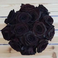 Semi di Rosa Nera Raro 2.5 - 3