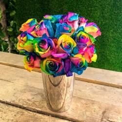 Semi di Rose Arcobaleno - Rainbow 2.5 - 2