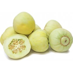 "Japanese Heirloom Melon Seeds ""Sakata's Sweet"" 2.35 - 1"