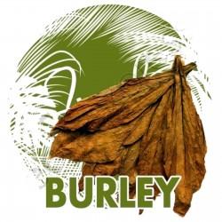 Burley Tobaksfrön kakao arom 1.95 - 1