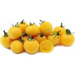 Pfirsich Tomatensamen 1.95 - 1