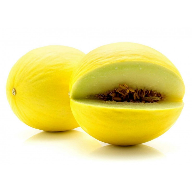 Semillas de Melón Amarillo Canario 1.95 - 3