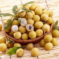 Kattöga Dimocarpus longan Frön 3.5 - 2