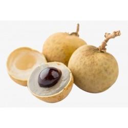 Longan-Baum Samen Exotische Frucht 3.5 - 4