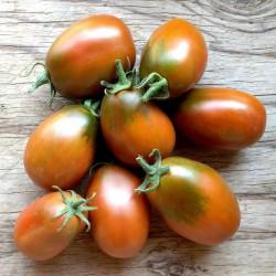 Graines de tomate PRUNE NOIRE - BLACK PLUM 2.85 - 3